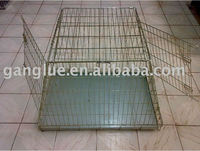 kennels for dog