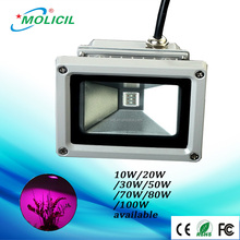 Competitive price 10W LED Grow Light high efficiency LED Plant Grow Light for tomato growing LED Lights