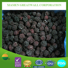 A grade frozen blackberry with best price