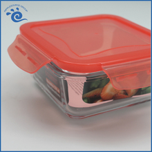 Color Borosilicate Glass Container For Food