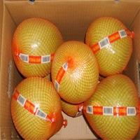 Buy fresh pomelo from China