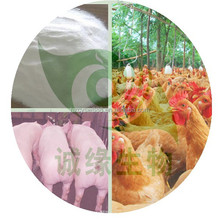 New product 50% Coated Sodium Butyrate/ coated sodium butyrate 30% 90% feed additives ex our factory low price
