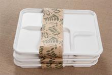 Disposable takeaway food containers 5 compartment from sugarcane