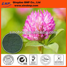 Buy Natural Red Clover Extract