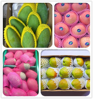 EPE/PE Packing fruit foam net/Expanding Packaging Net