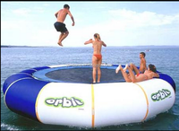 2015 new design professional cheap inflatable water trampoline costco for adults and children