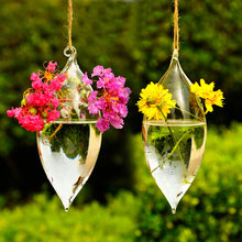 Elegant hanging glass vase for water plant