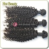 Hot beauty hair supply all kinds of hair extensions atlanta