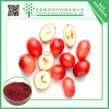 100% pure natural 10:1 20:1 cranberry extract/free sample cranberry juice extract/bilberry fruit powder