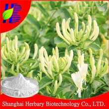 2015 Hot sale honeysuckle flower exract/honeysuckle extract chlorogenic acid