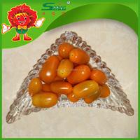 Top Quality Fresh tomato, yellow cherry tomato