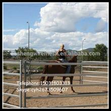 Steel Tube round pen 6 rail panels /portable cattle fence/horse sheep pens yard panels