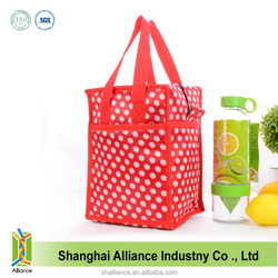 custom flexible solar powered cooler bag