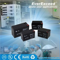 EverExceed 12v 7ah deep cycle small industrial battery