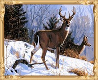 wall art deer christmas paint by number GX7532