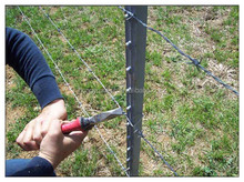 Studded T post / Y fencing post/ star picket with cattle fence barbed wire