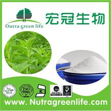 100% Natural Stevia P.E. herbal product