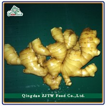Anqiu Ginger 1LBS/Mesh Bag ; Sale To UAS Supermarket