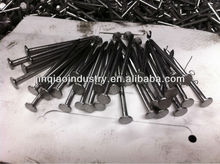 Liso Clavos, Mesh Head and Diamond Point, Common Nail