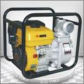la gasolina de la bomba de agua manual