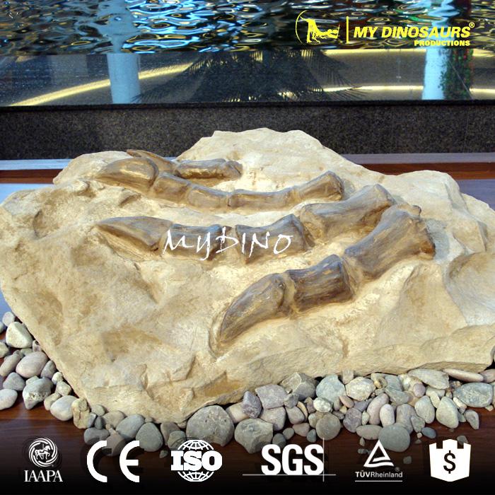 paw fossil wall.jpg