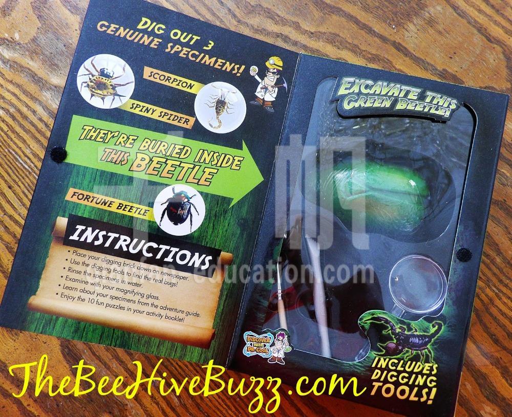 Real Bug Dig 3.JPG