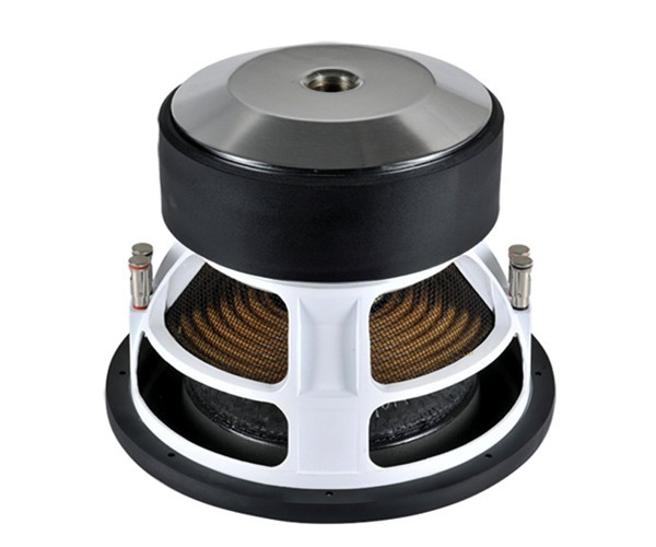 12inch car audio subwoofer made in china.jpg