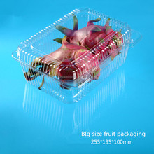 Large Capacity Plastic Fruit container with transparent hinged lid