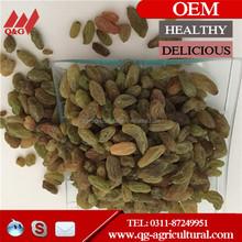low price green raisin/black raisin/brown raisin