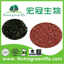 Instant Black Tea Powder / Black Tea Powder / Instant Black Tea Extract