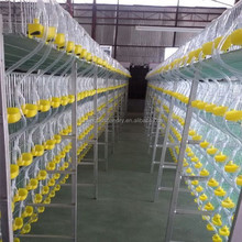hot selling and good quality quail breeding cages