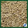 Arabica unroasted coffee beans