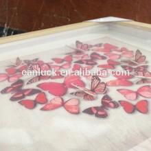 Moderno 3d mariposa arte de la pared/colgando de las artes de imagen para decoración de la habitación