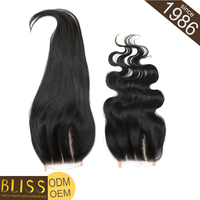 Unique Style Human Wet And Wavy Brazilian Hair With Closure