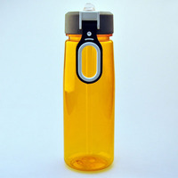 bpa free clear ODM insulated plastic bottle carrier for promotion