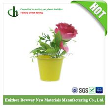 Seedling mini flower Pots eco-friendly pots