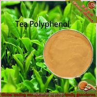 CAS 84650-60-2 natural 98% polyphenol green tea extract
