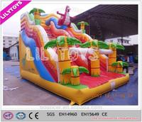Wonderful attractive design inflatable slide/inflatable dry slide/China inflatable manufacturer