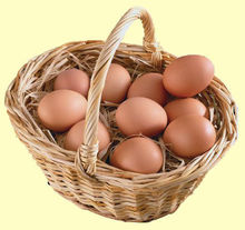 Diary chicken eggs,wheat flour, sunflower oil