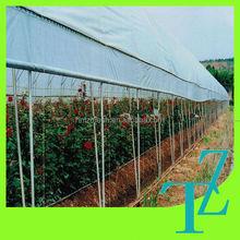 various PE food grade greenhouse mulching film anti uv for plant