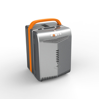 Mini UPS System with LFP Battery inside Supporting Most Home Appliances
