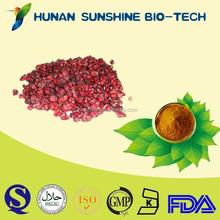 100% Natural plant extract powder / Tranquilization schisandra P.E. 2% schisandrins