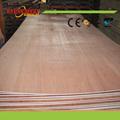9-Ply tableros de madera contrachapada tipo y First Class grado laminado andamios de madera tablones de madera