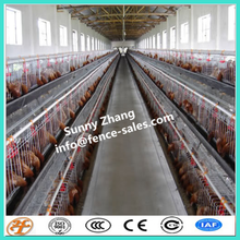 layer egg chicken cage poultry farm house design for African market