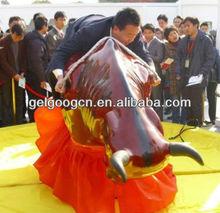 Crazy Bull fighting/ Rodeo bull for pleasure ground