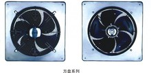 Axial Fan Motor with frame