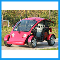 Electric Sightseeing New Golf Carts