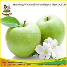 New crop fresh green apple prices