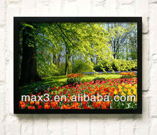 Brand Flower Black Framed Wall Hanging Paintings for House Decoration