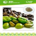 Ervas naturais para reduzir a pressão arterial em grão de café verde extrato
